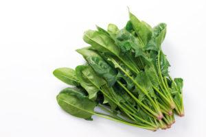 ほうれん草が身体に与える栄養成分と効能